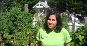 An interview with Jeanne Nolan of the Edible Gardens on 09/21/2013.