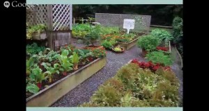 Gardening with Heirlooms, presented by Rosalind Creasy
