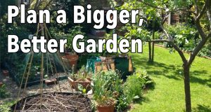 How to Plan a Bigger, Better Garden – Easy Vegetable Garden Planning